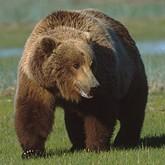 Новости охоты и рыбалки в конце апреля 2012