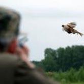 Новости охоты в начале мая 2012