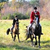 Норфолкский охотничий клуб устраивает праздник охотничьих собак и лошадей