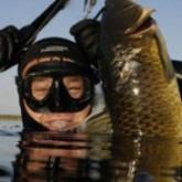 Соревнования по подводной охоте  в Светлогорске, Краснодарском крае и в Запорожской области