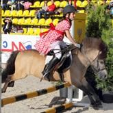 Детский конный спорт: Благотворительная акция для пони-клубов