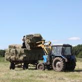 Заготовка кормов для ООО КСК Левадия в ООО «Барсучок»