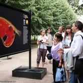 Выставки в Москве: Камчатка. Ускользающий мир -