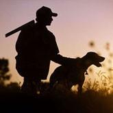 Открытие охоты 2012 с собаками в регионах