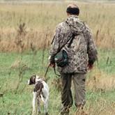 Открытие охоты 2012 на Колыме, в Кузбассе и Пермском крае и сроки охоты в регионах