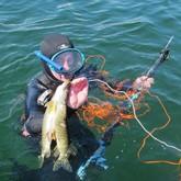 В Бурятии прошёл открытый чемпионат республики по подводной охоте