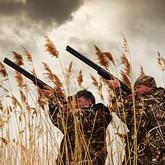 Квоты на добычу  и жеребьевки на право охоты в регионах страны