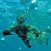 На Украине провели Чемпионат по подводной охоте и хотят ее запретить (ВИДЕО)