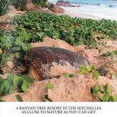 Nature Seychelles, Victoria - Журнал о Природе Сейшельских островов