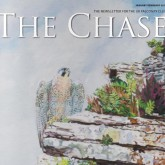 THE CHASE -January - February 2011