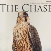 Страсть - журнал британских сокольников - THE CHASE - July/August 2011