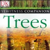 Энциклопедия леса - DK Eyewitness Trees