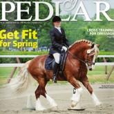 Янки-Коневод - Horsemen's Yankee Pedlar magazine