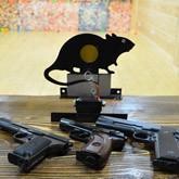 Луки и пневматическое оружие: Стрелковая секция в тире КСК ЛЕВАДИЯ