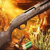 В оружейном магазине Охотничий двор расширение ассортимента