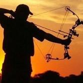 Охота с луком и арбалетом: Цены на арбалеты, луки и стрелы