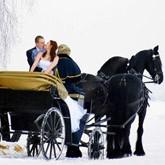 Аренда экипажа: Свадебная фотосессия с фризами