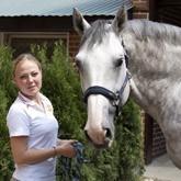 В КСК Левадия откроется Музей Человек и лошадь: Принимаем экспонаты